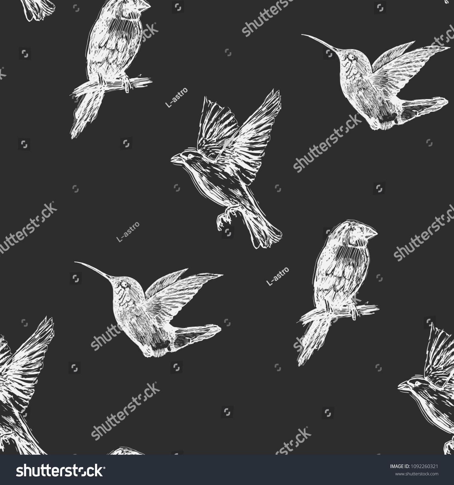 Hummingbird Seamless Pattern Hand Drawn Tropical Stock Vector
