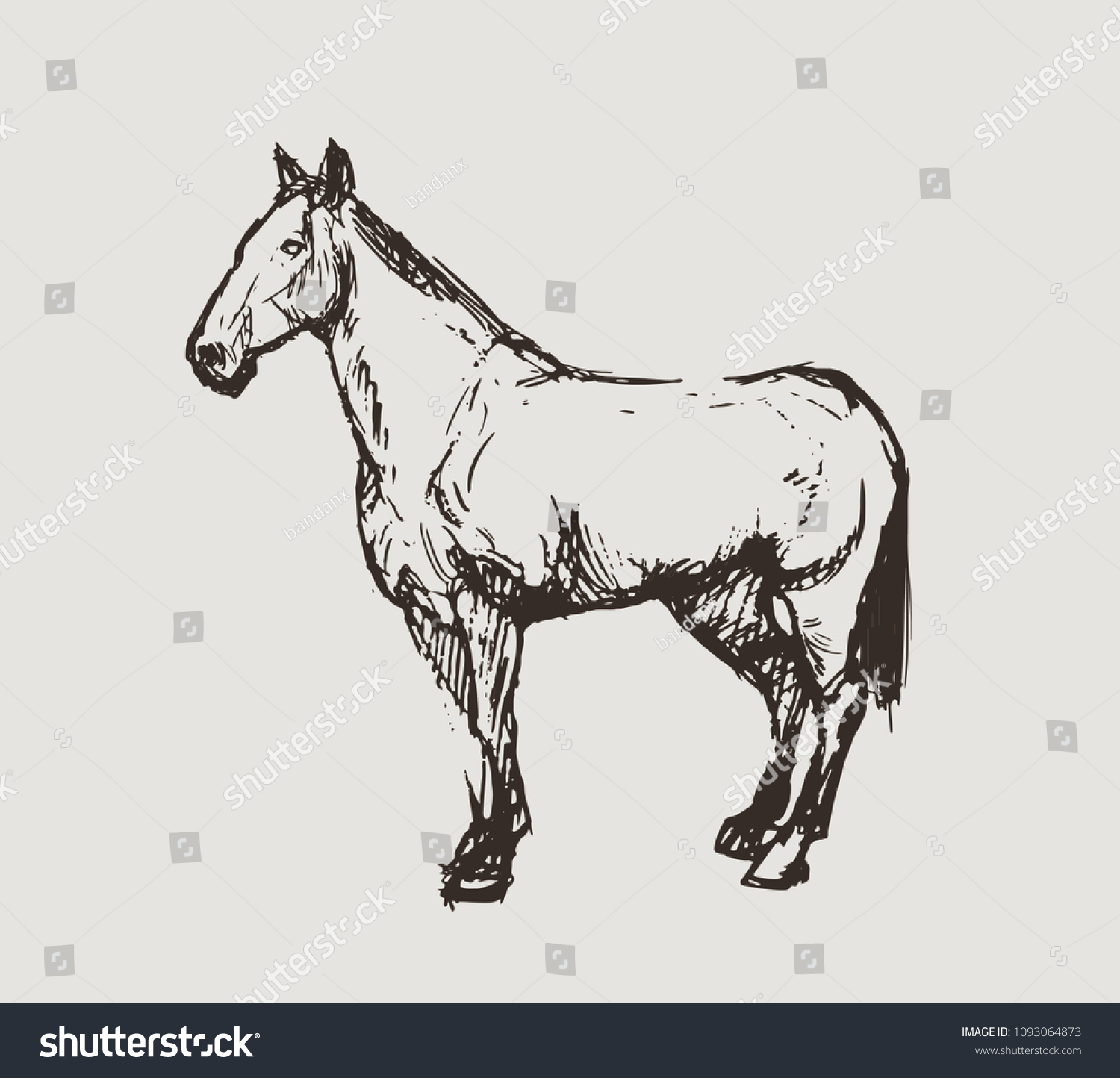 Hand Draw Sketch Horseart Drawing Stock Vector Royalty Free 1093064873