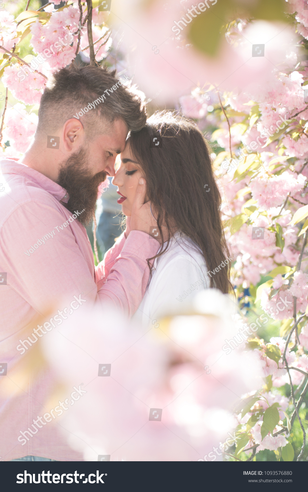 Cherry blossom dating love take a dating quiz