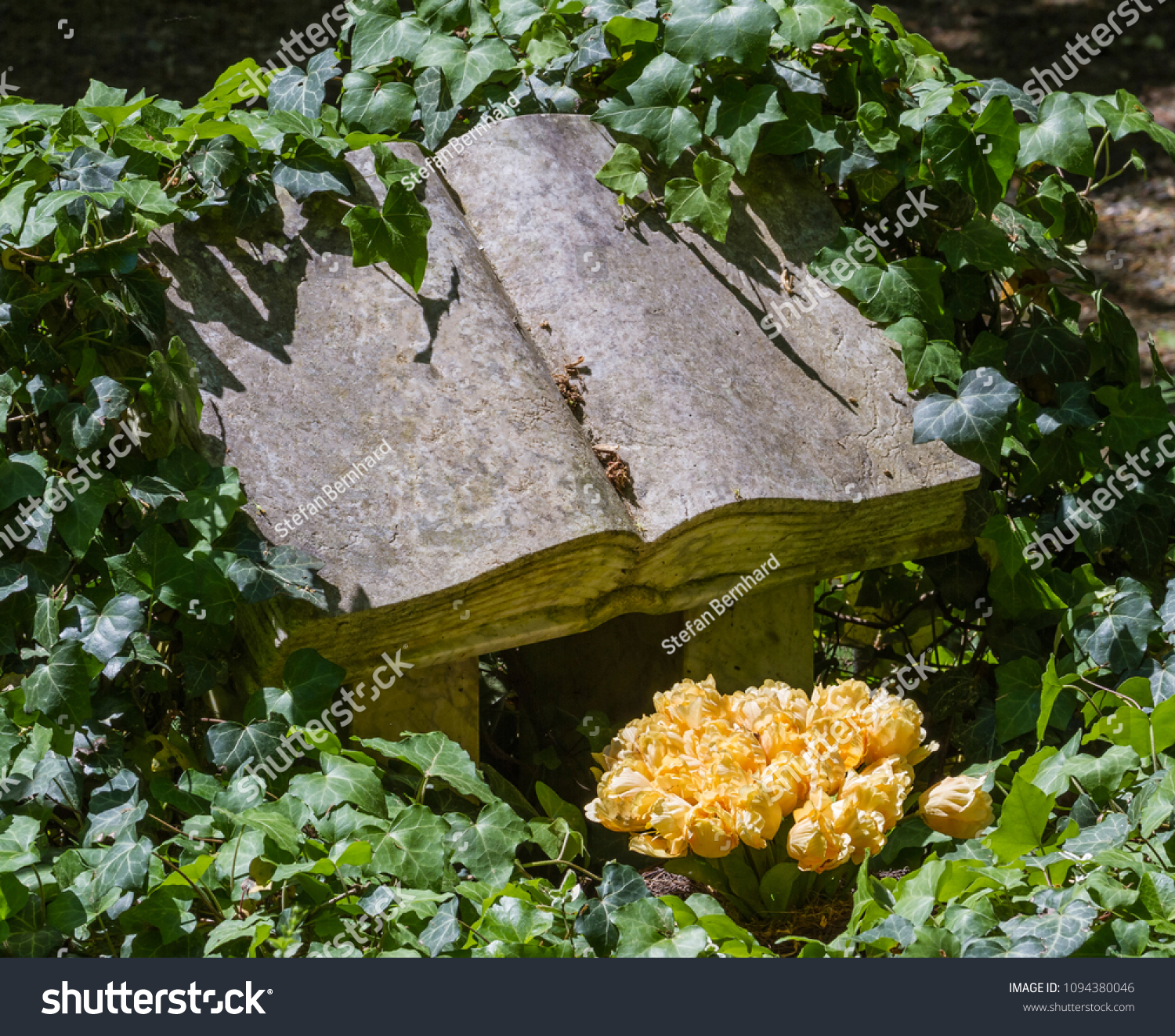Very Nice Ivy Overgrown Tombstone Shape Stock Photo Safe To Use