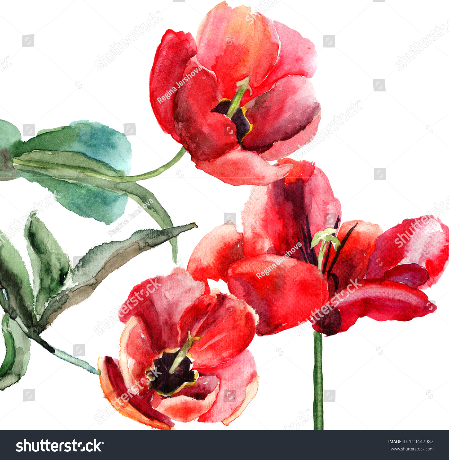 Beautiful Tulips Flowers Watercolor Painting Stock Illustration