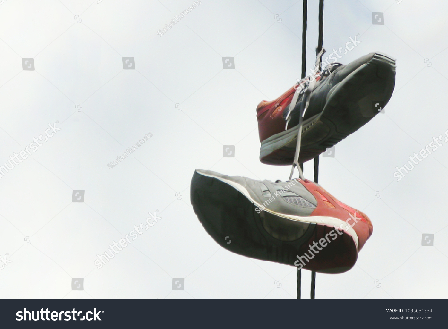 Two Old Sneakers Hang On Electric Stock Photo (Download Now ...