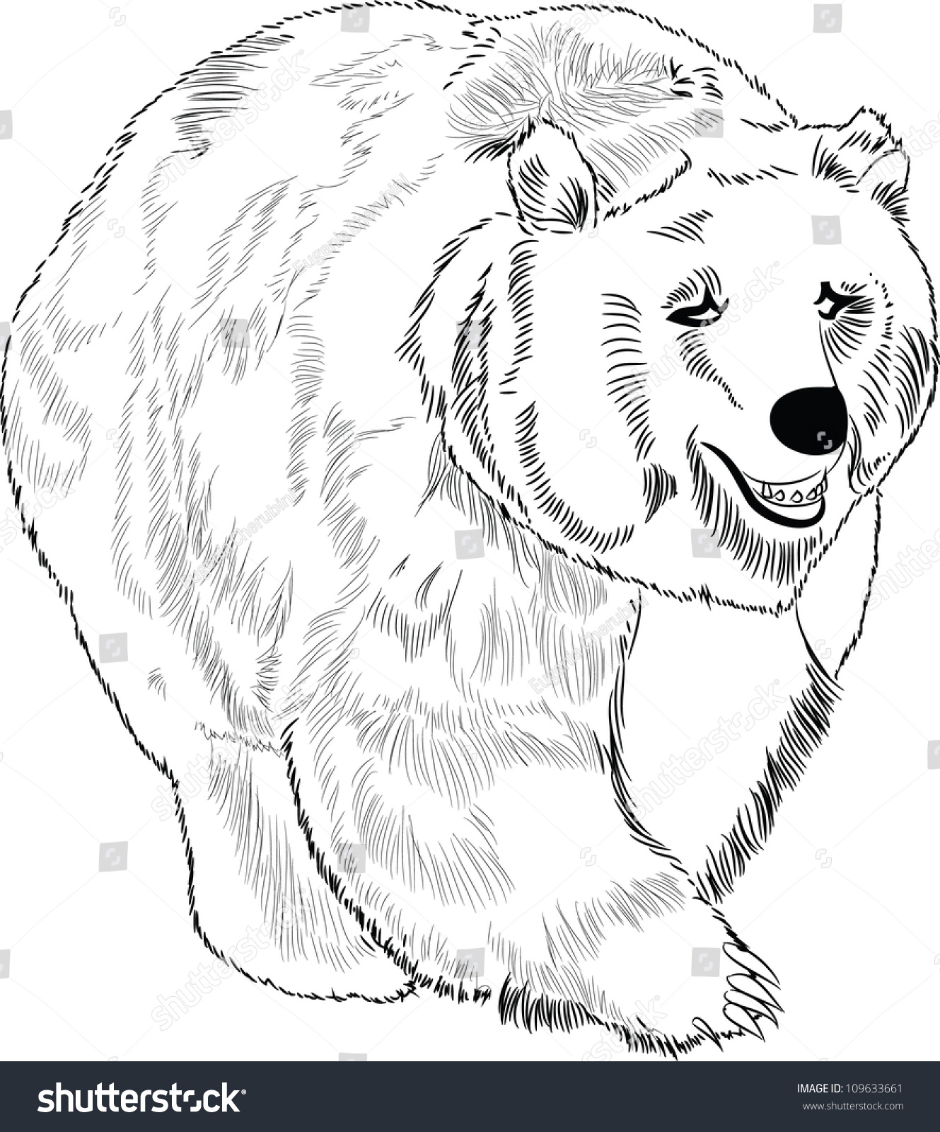 Hand Drawn Polar Bear Lineart Stock Vector Royalty Free