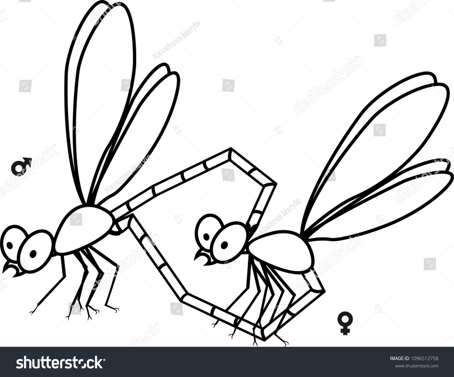 Mating Couple Dragonflies Coloring Page Stock Vector 1096512758 ...