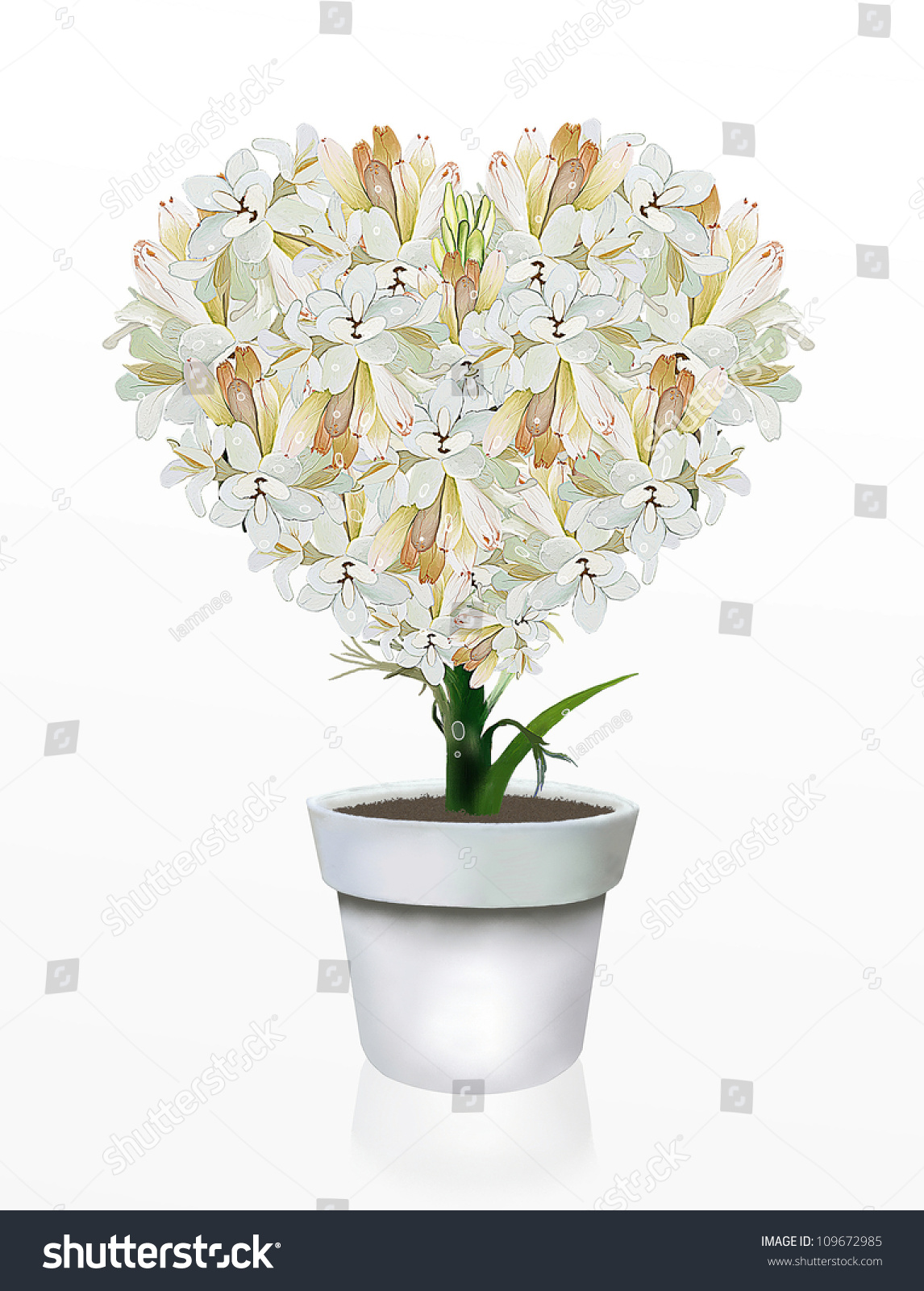 Beautiful Heart Shape White Tuberose Flowers Stock Illustration