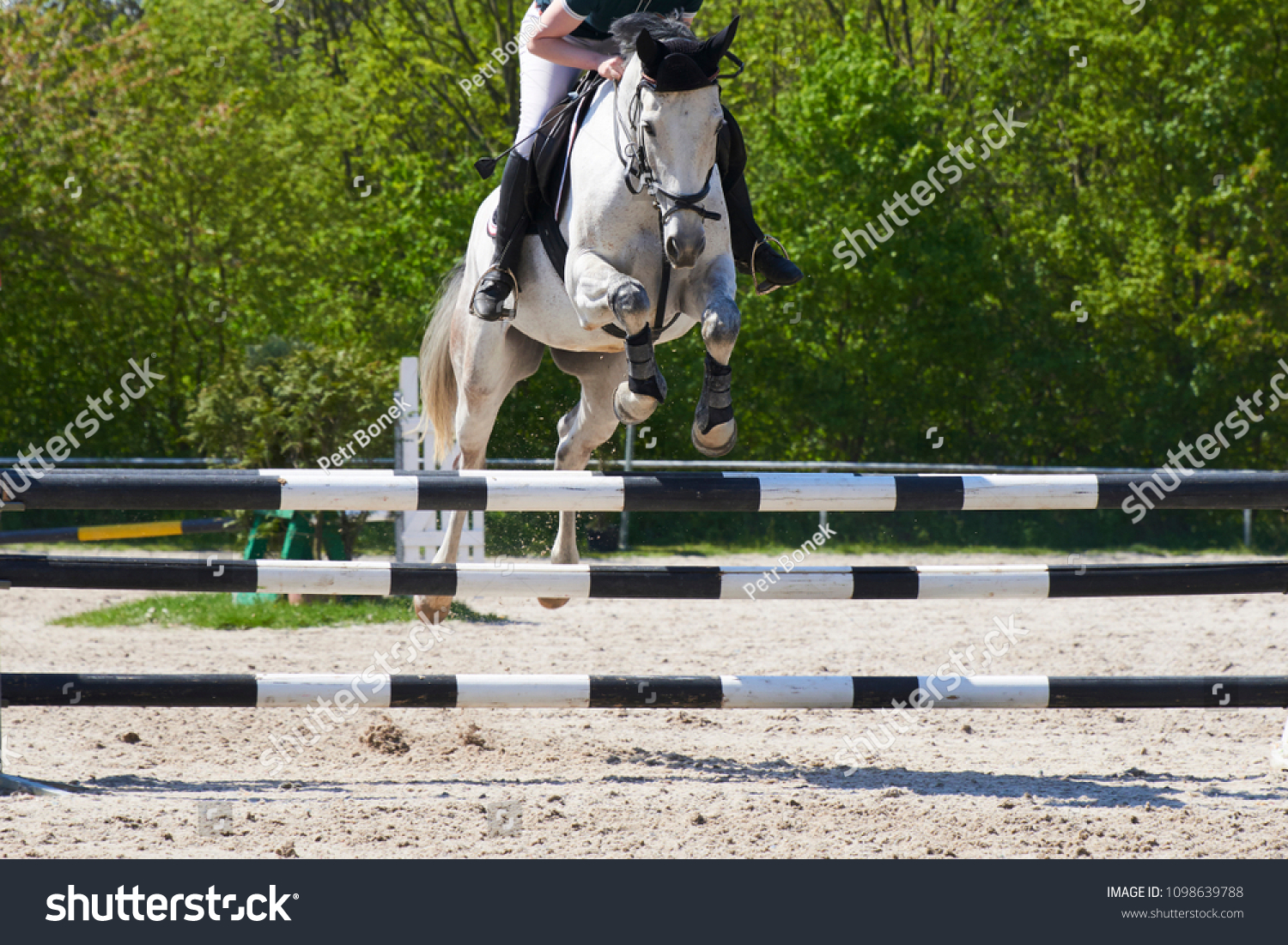 Equestrian Sports Horse Jumping Show Jumping Stock Photo Edit Now 1098639788