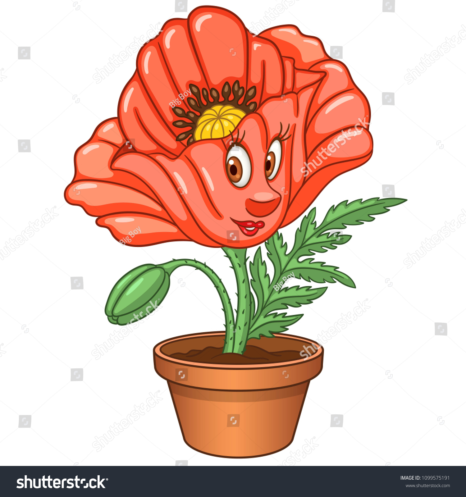 Red Poppy Flower House Plant Pot Stock Photo (Photo, Vector ...