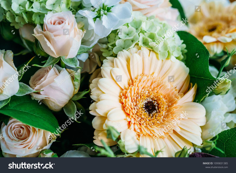 Pink Roses Gerbera Daisy Flowers Wedding Stock Photo Edit Now
