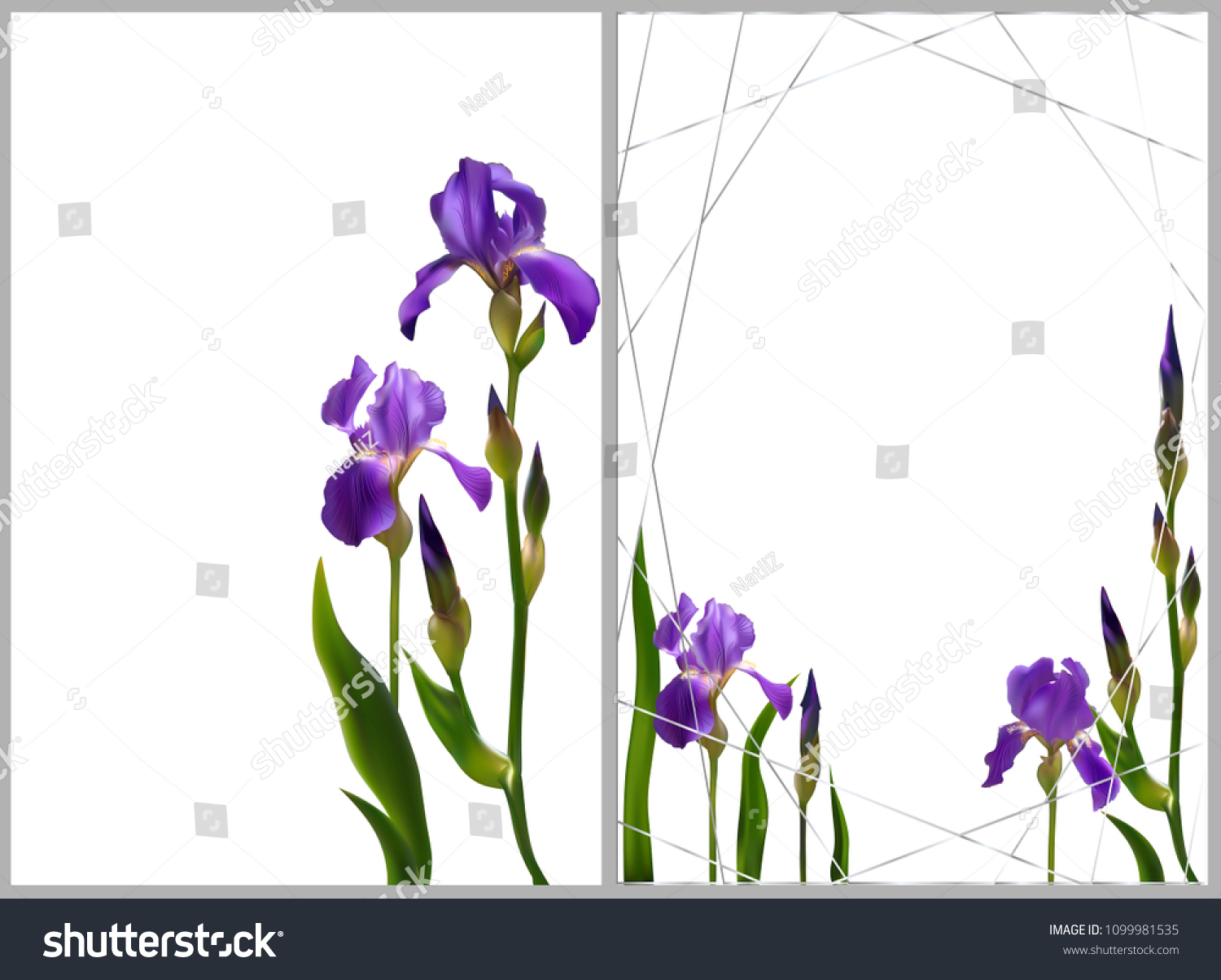 Iris Flowers Floral Background Border Buds Stock Vector 1099981535