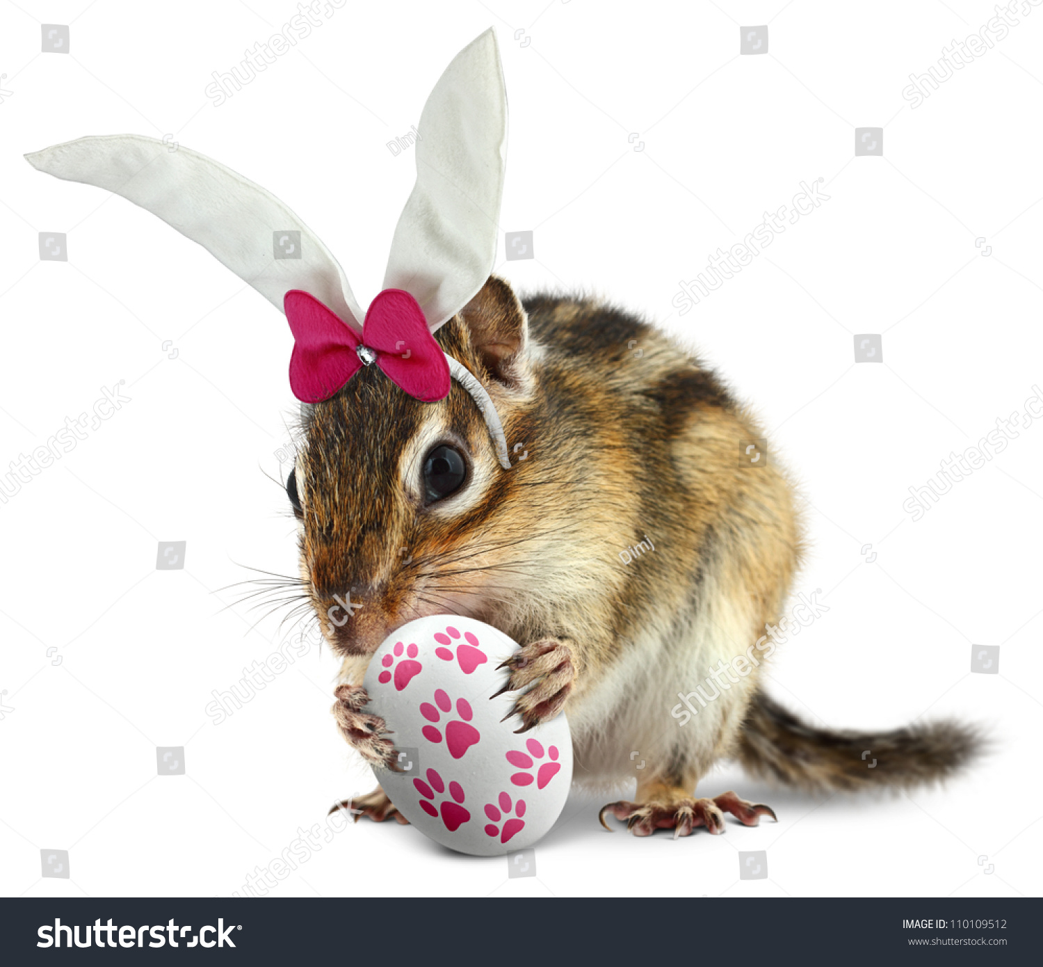 Funny Chipmunk With Bunny Ears And Hold Easter Egg Stock Photo ...