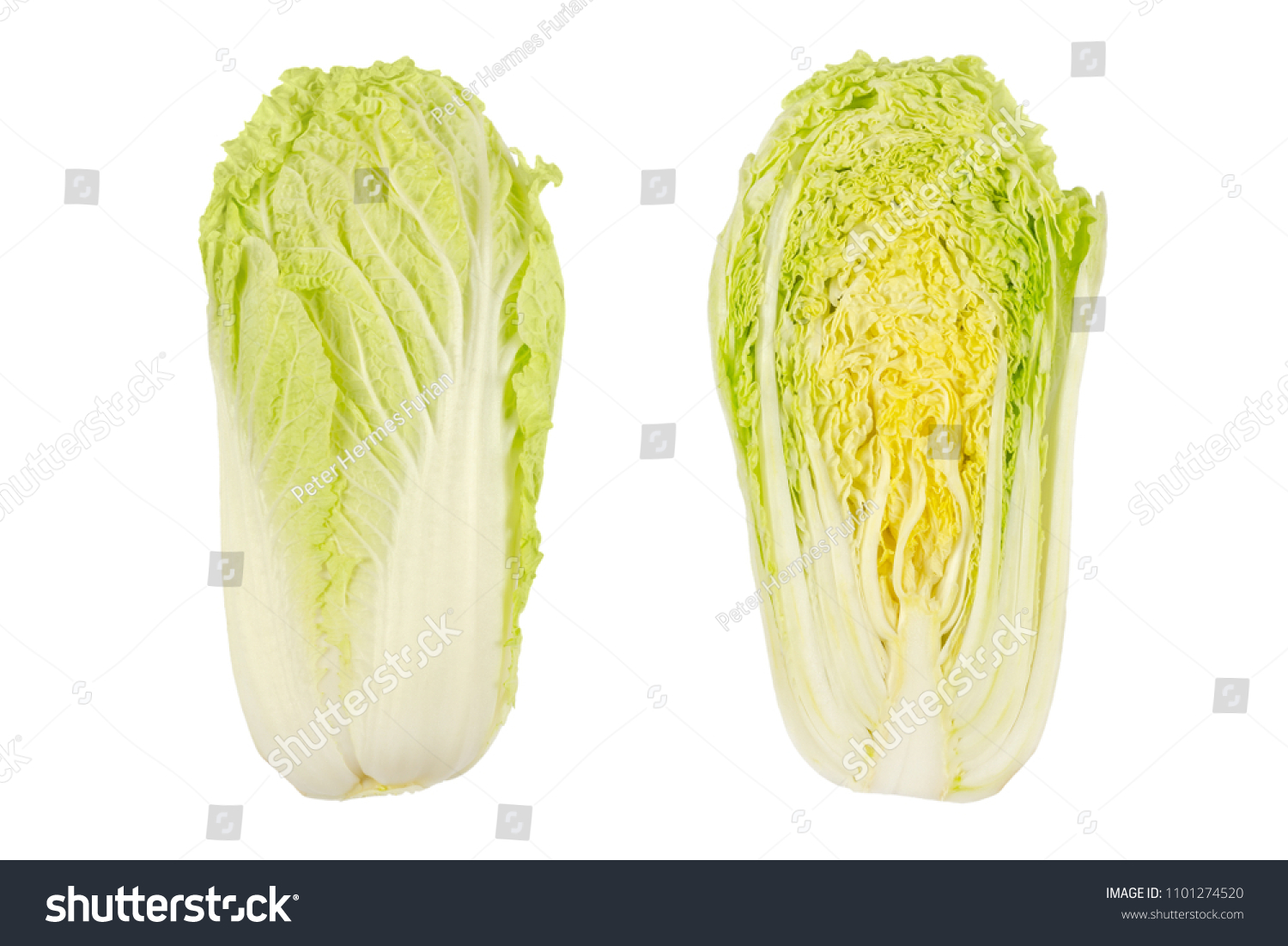 Napa Cabbage Whole Half Chinese Cabbage Stock Photo Edit Now 1101274520