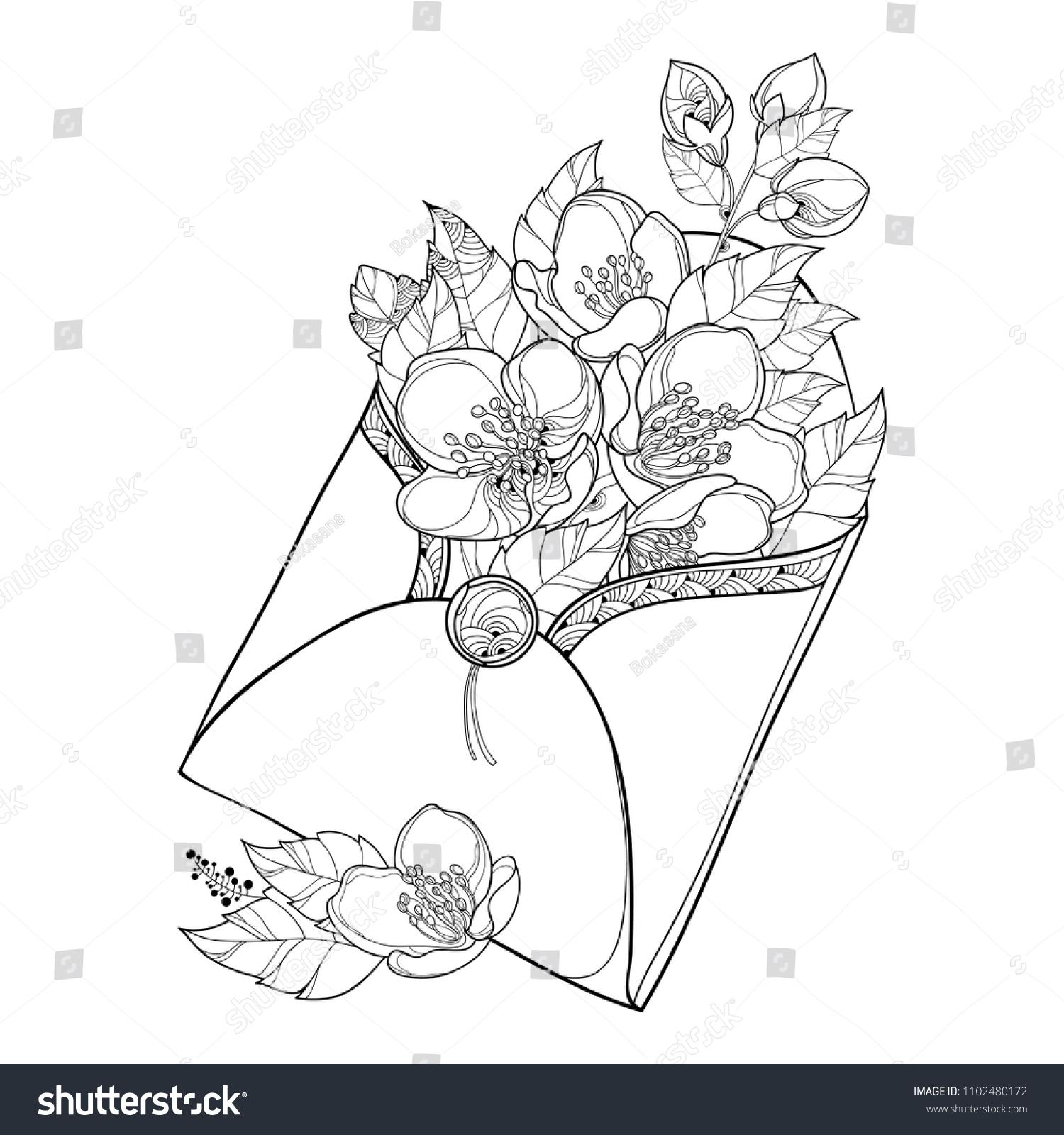 Vector bouquet outline jasmine flower bunch stock vector royalty vector bouquet with outline jasmine flower bunch bud and ornate leaf in black in open izmirmasajfo