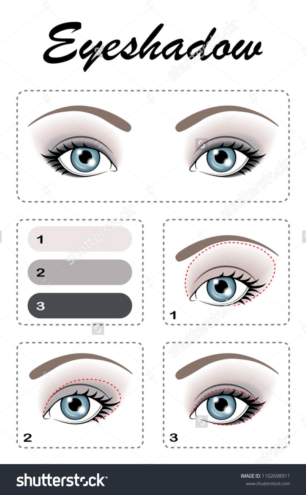 Eye Makeup Step By Step Eyeshadow Stock Vector Royalty Free