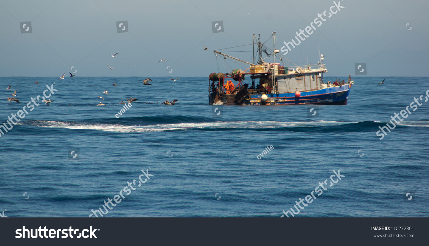 Birds chasing commercial fishing boat off the coast of for What is commercial fishing