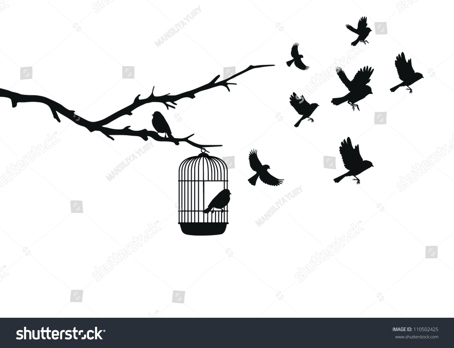 Bird Cage Drawing Flying