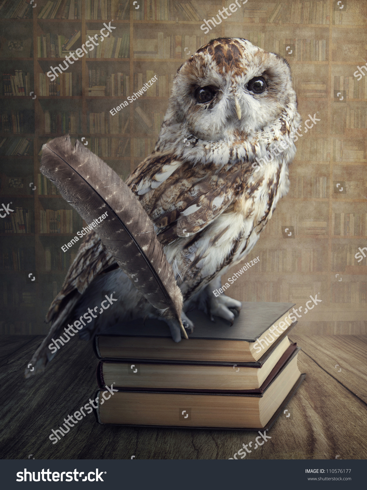Wise Owl Sitting On Books Stock Photo 110576177 Shutterstock