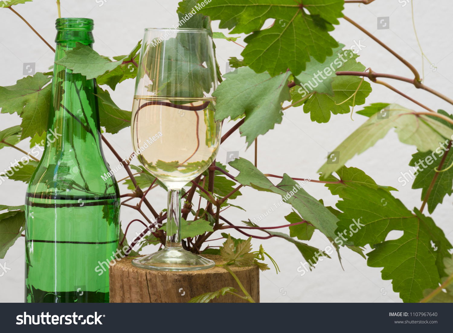 stock-photo-a-glass-of-white-wine-and-a-