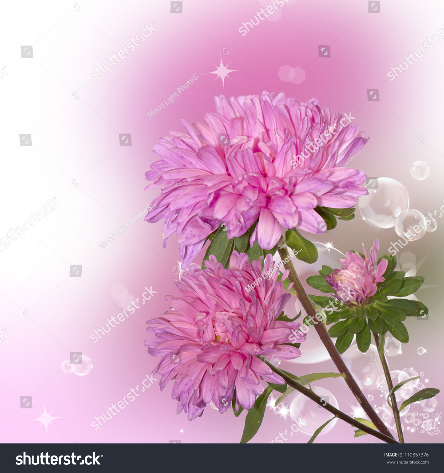 Pink Decorative Autumn Flowers Over Abstract Stock Illustration
