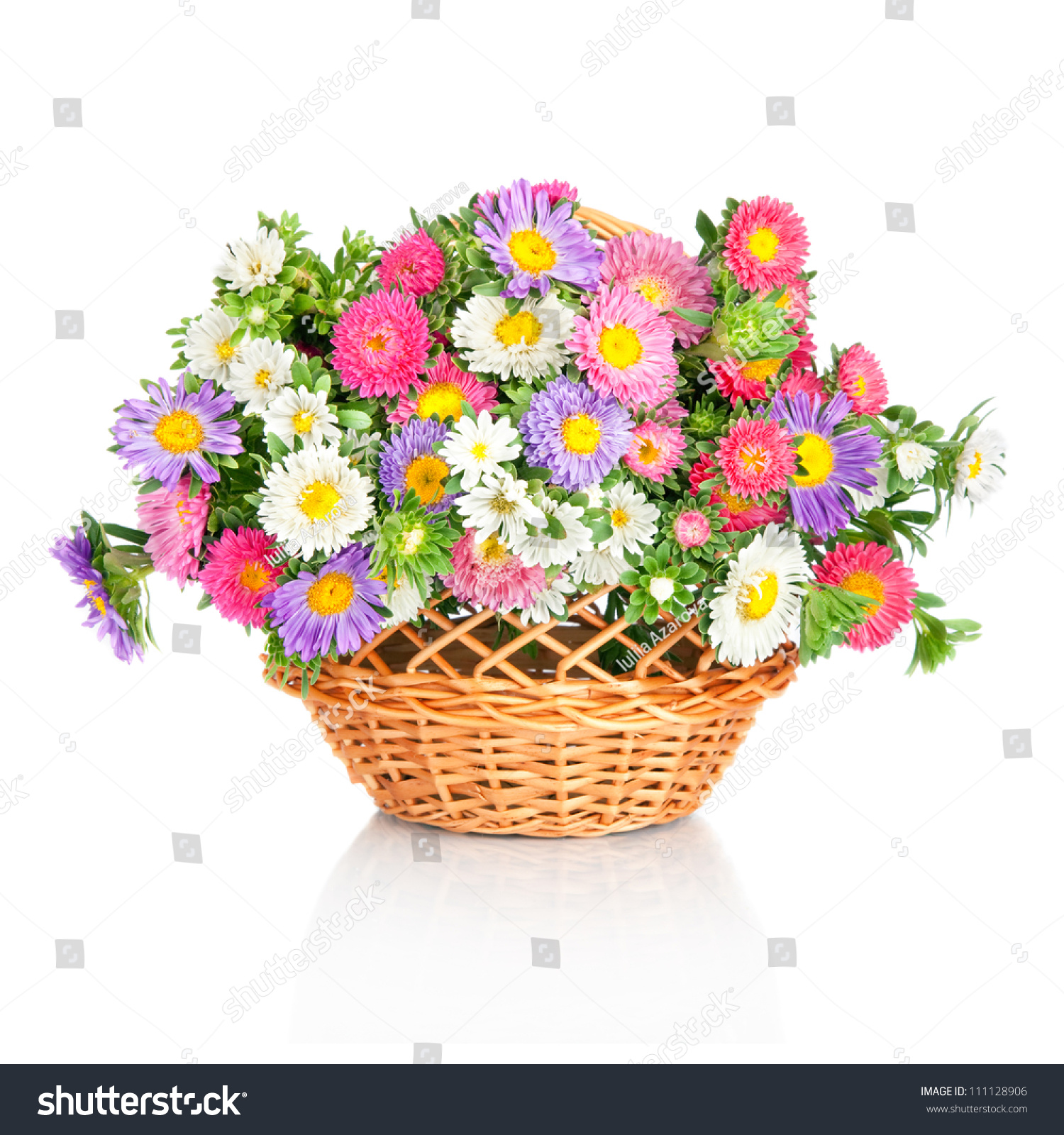 Beautiful flower basket made by such stock photo royalty free beautiful flower basket made by such as wild chrysanthemum and aster isolated on white izmirmasajfo
