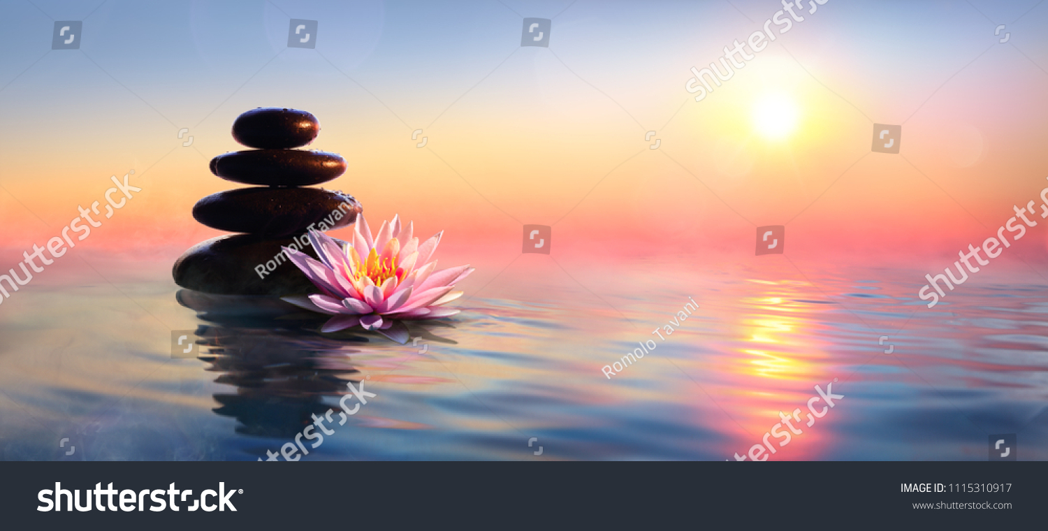 Zen Concept - Spa Stones And Waterlily In Lake At Sunset  #1115310917