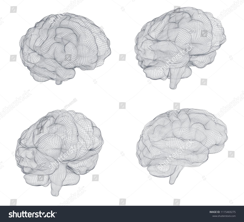 set threedimensional vector cyber brain neural stock vector royalty