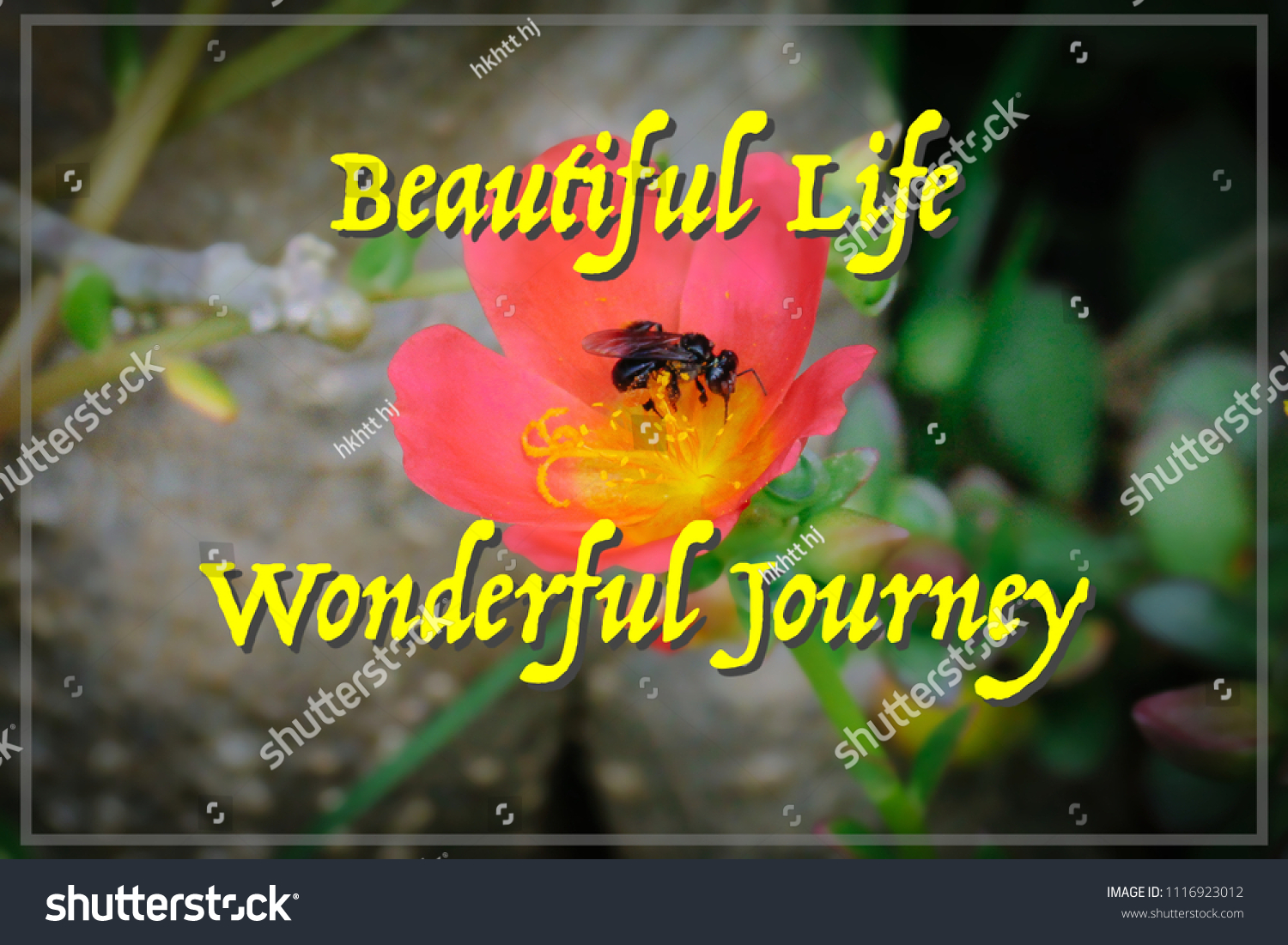 Motivational Inspirational Quotes Beautiful Life Wonderful Journey