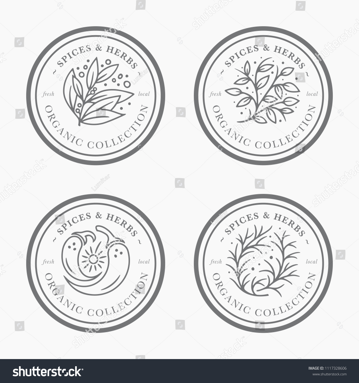 spice herb vintage label collection black stock vector (royalty free