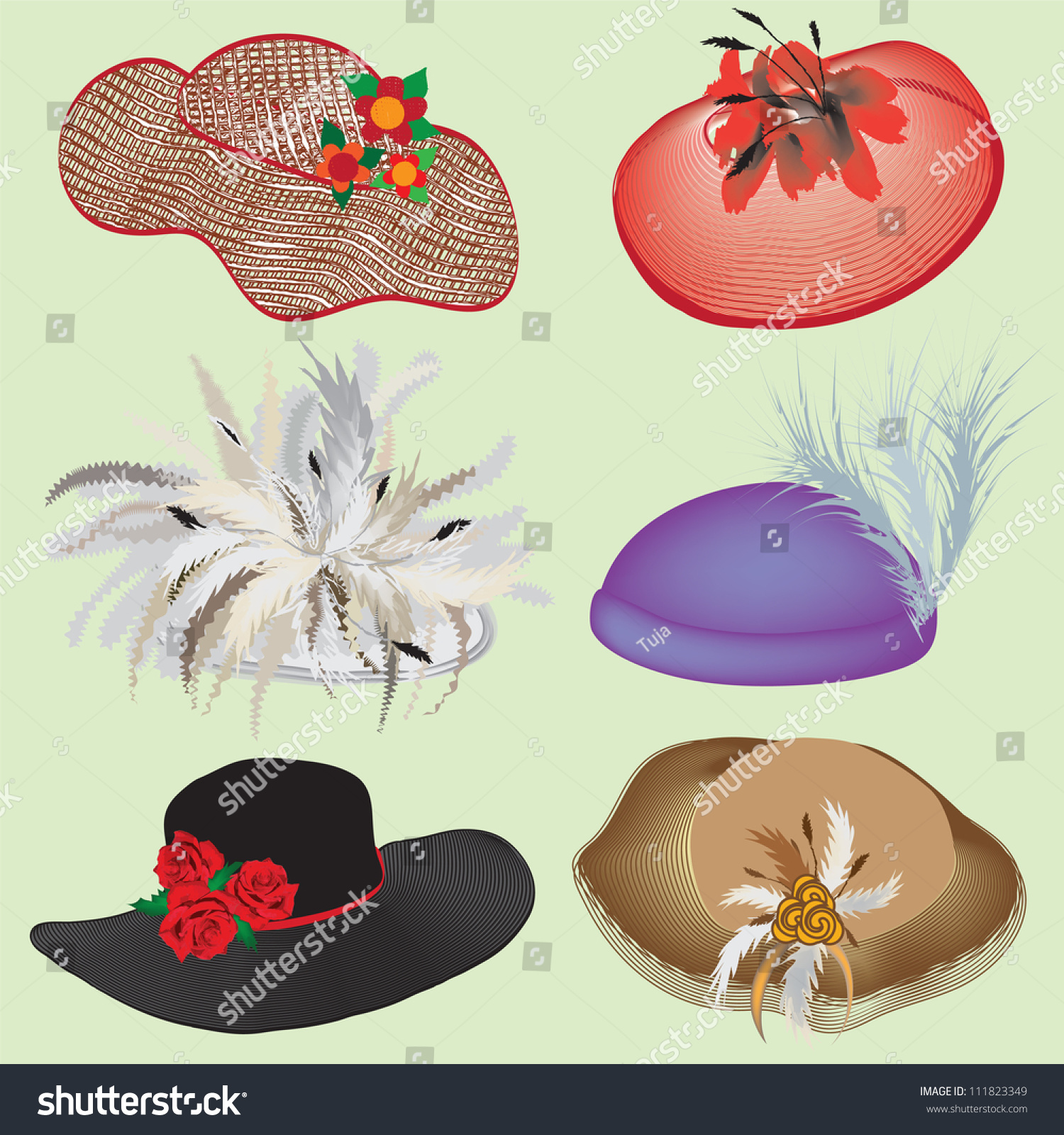 Collection stylish hats feathers flowers woman stock vector 111823349