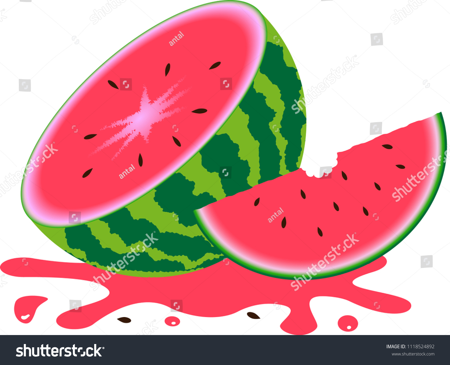 Watermelon Slices Watermelon Seeds Stock Vector (Royalty Free