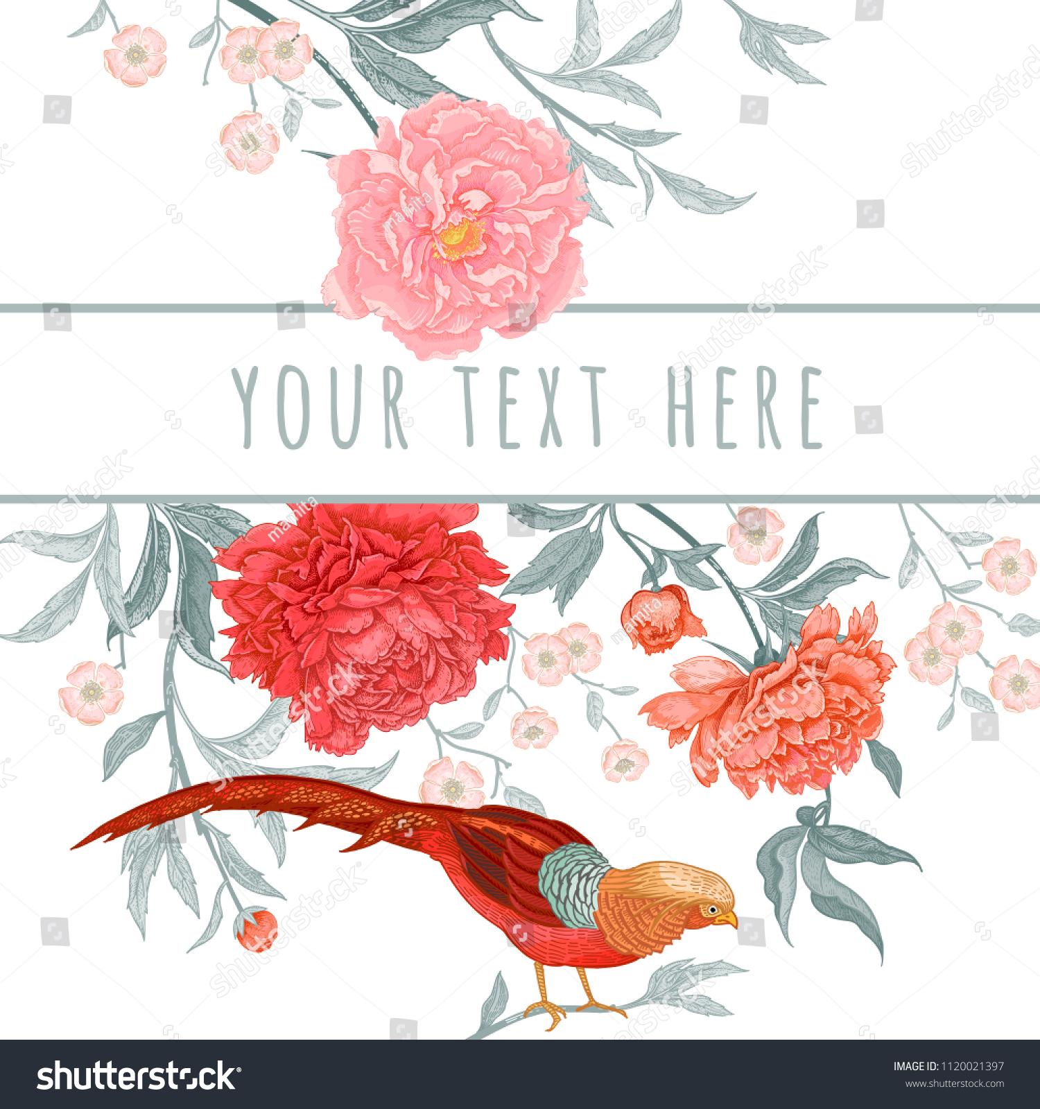 Card Flowers Birds Peonies Pheasants Floral Stock Vector (Royalty ...