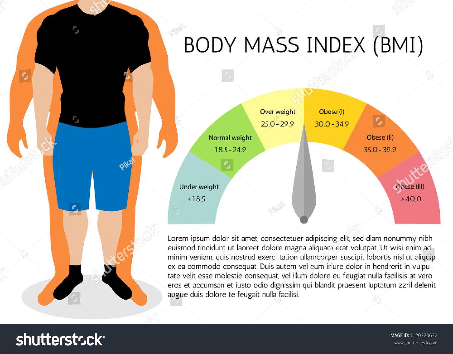 Bmi Body Mass Index Infographic Chartvector Stock Vector Royalty Free 1120320632