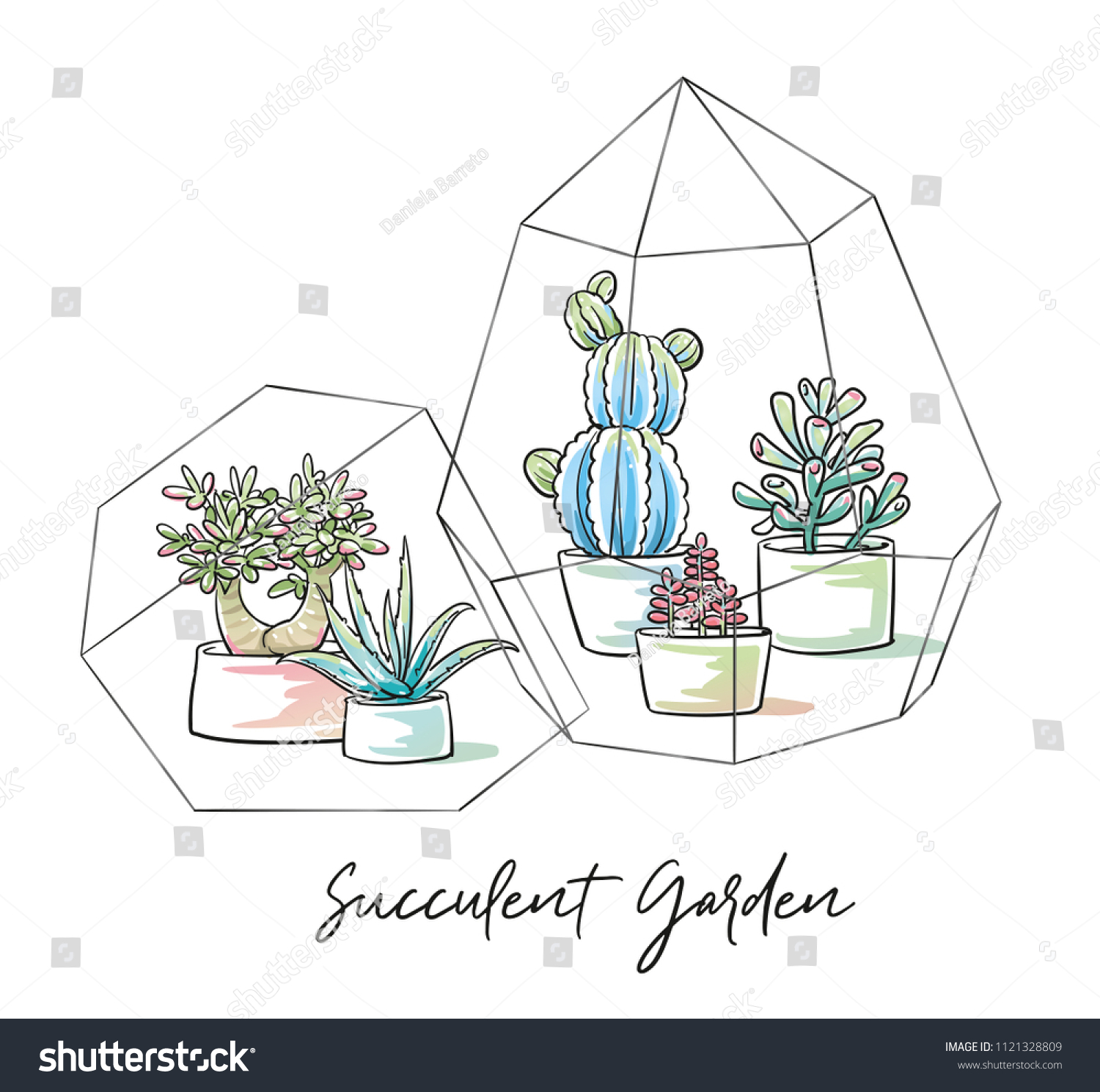 Beautyful Succulents Cactus Plants Garden Pottery Stock Vector Royalty Free 1121328809