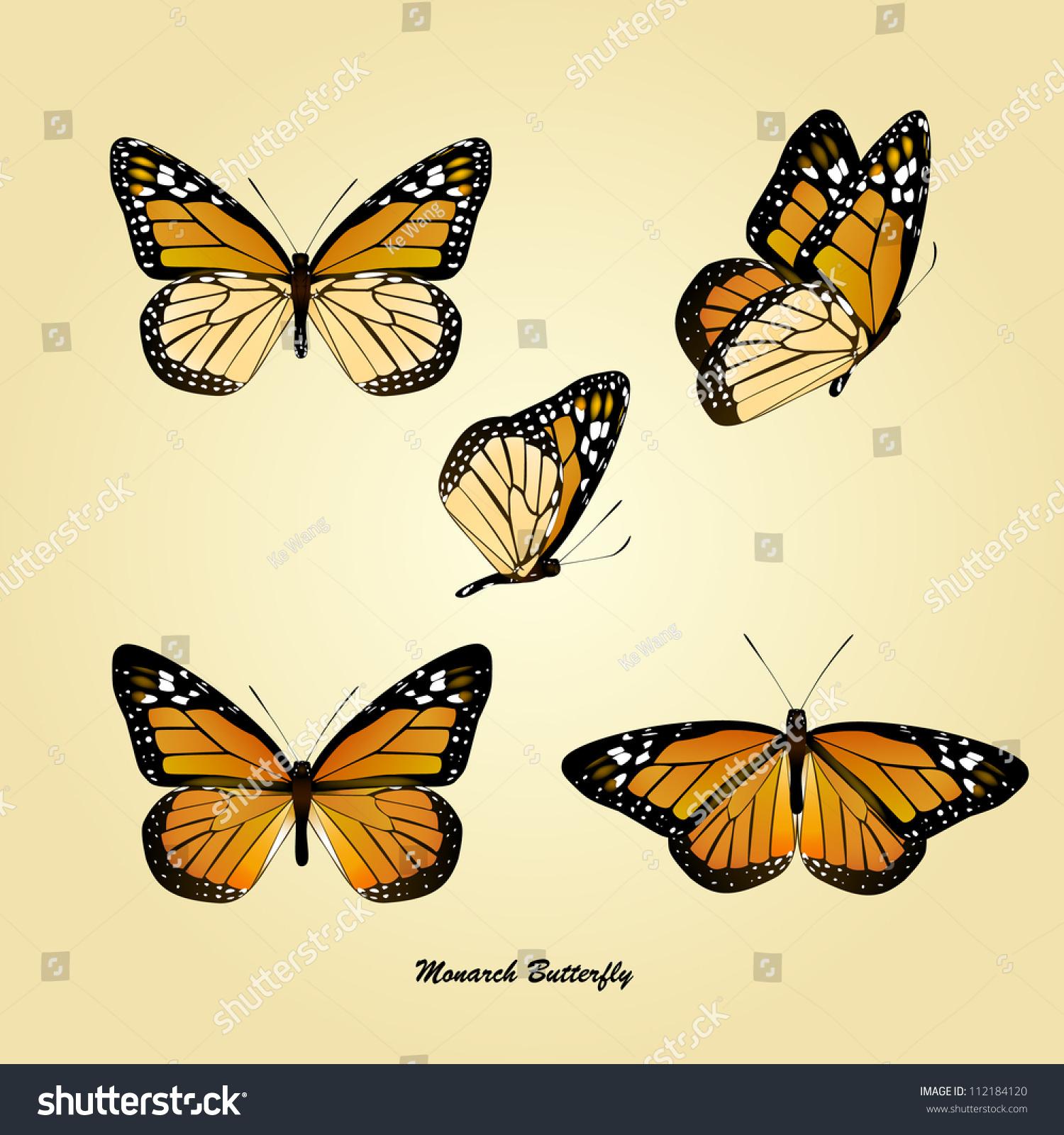 vector monarch butterfly stock vector 112184120 shutterstock