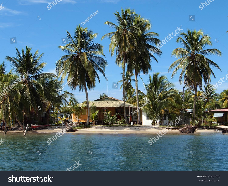 Caribbean Beach Houses Caribbean Beach House Under Coconut Trees Stock