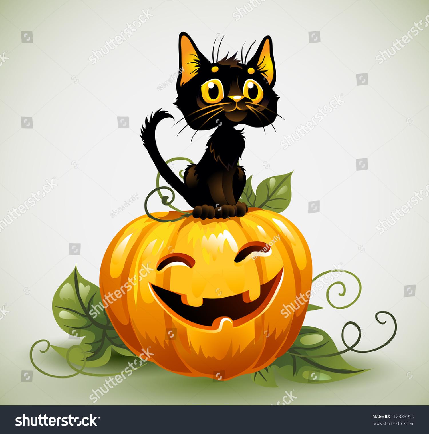 a cute black cat on a halloween pumpkin