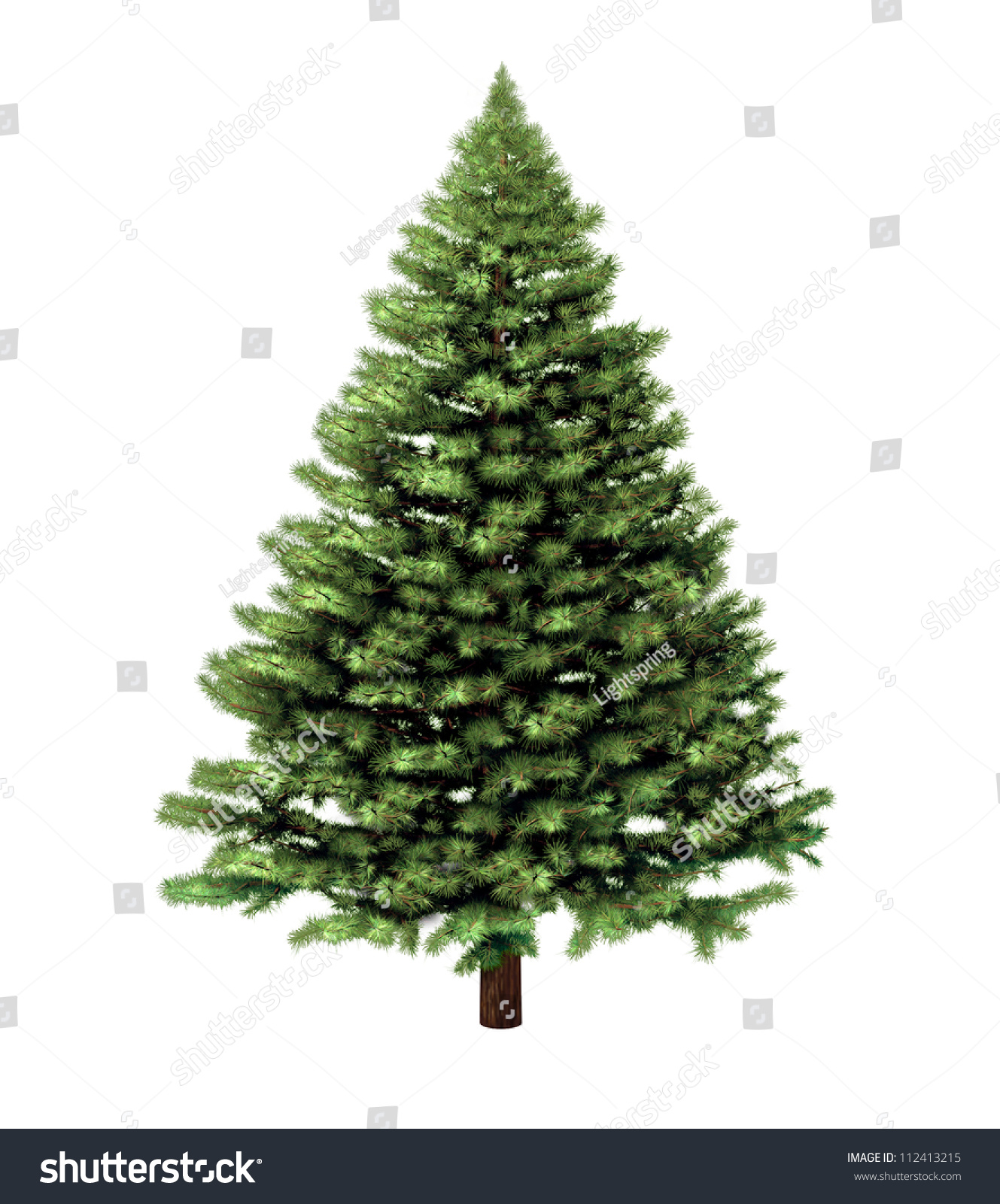 Christmas Tree Isolated On A White Background Without Any