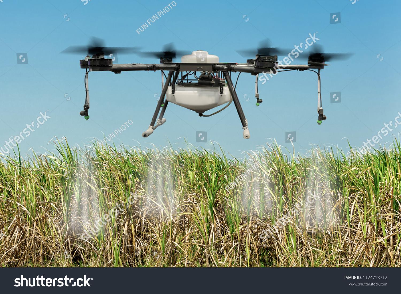 prix d'un drone predator
