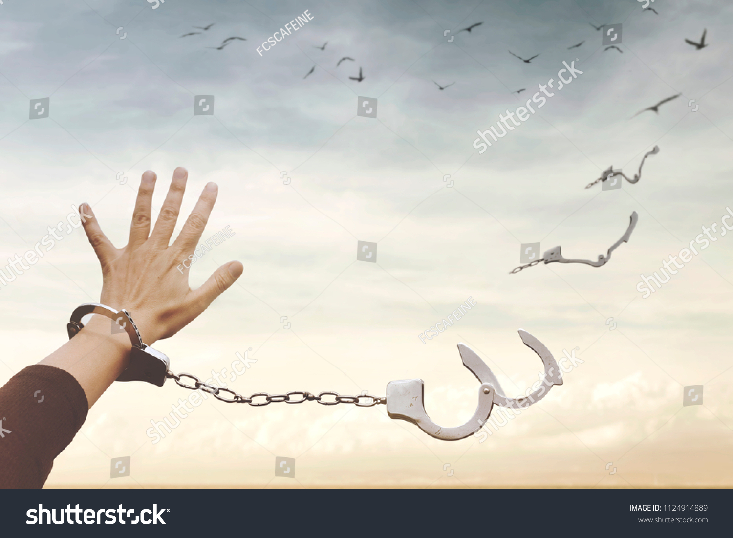conceptual image of a broken handcuff that turns into free birds in the sky