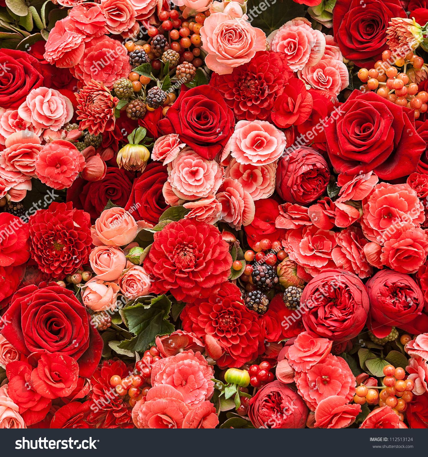 Beautiful Flower Garden Abstract Background Flowers Closeup Stock Photo 112513124