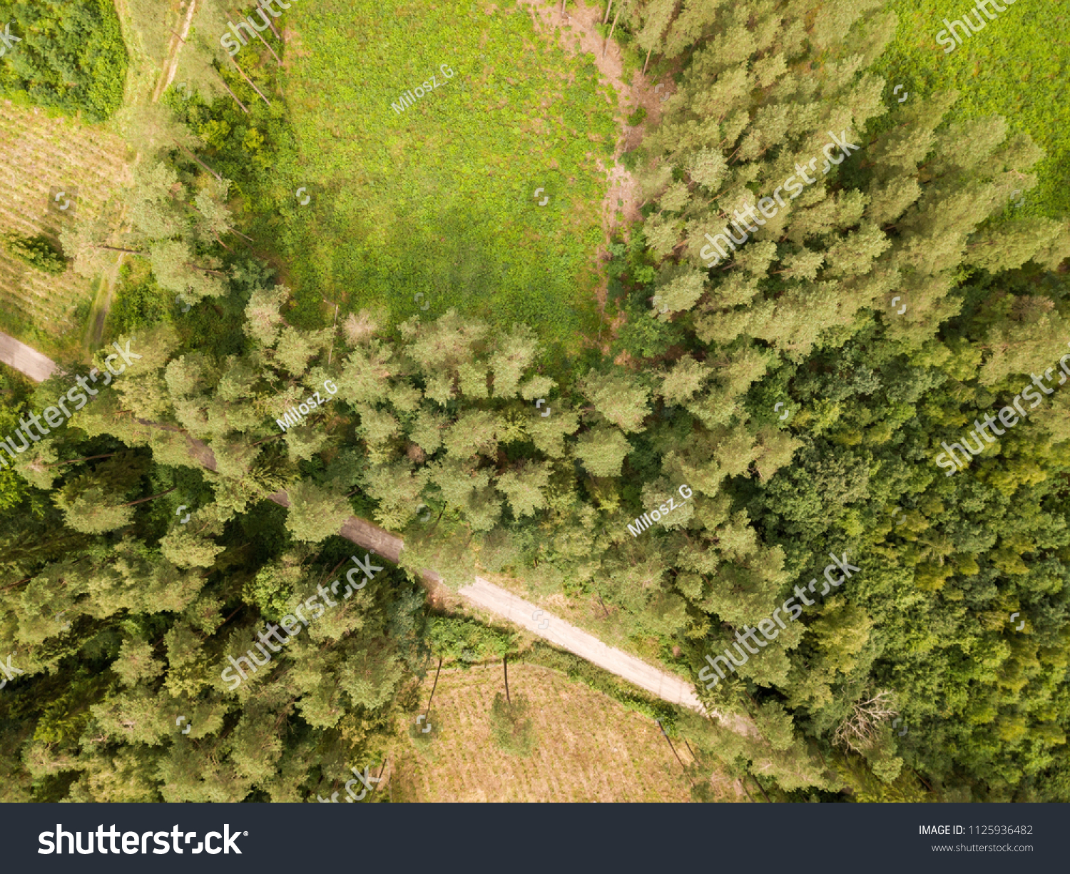 Drone Photography Forest Above Stock Photo Royalty Free 1125936482