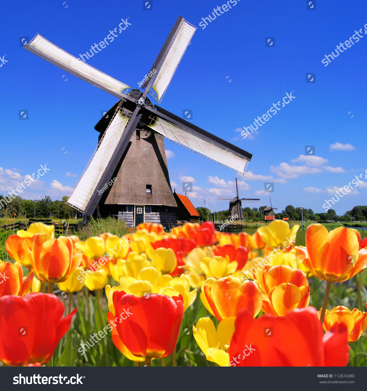 Traditional Dutch Interior Design: Traditional Dutch Windmills With Vibrant Tulips In The