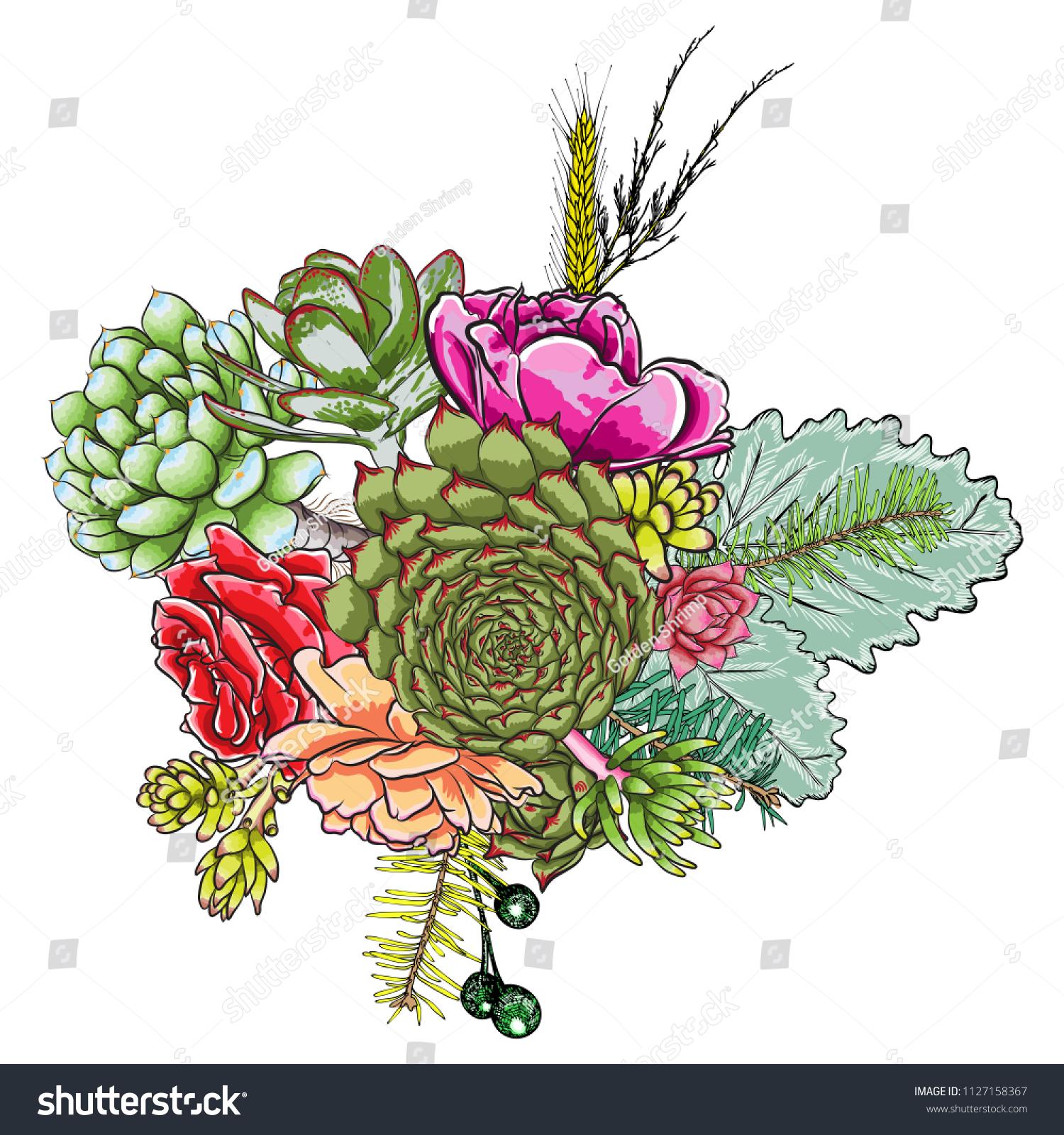 Green Colorful Succulent Echeveria Design Bouquet Stock Vector Royalty Free 1127158367