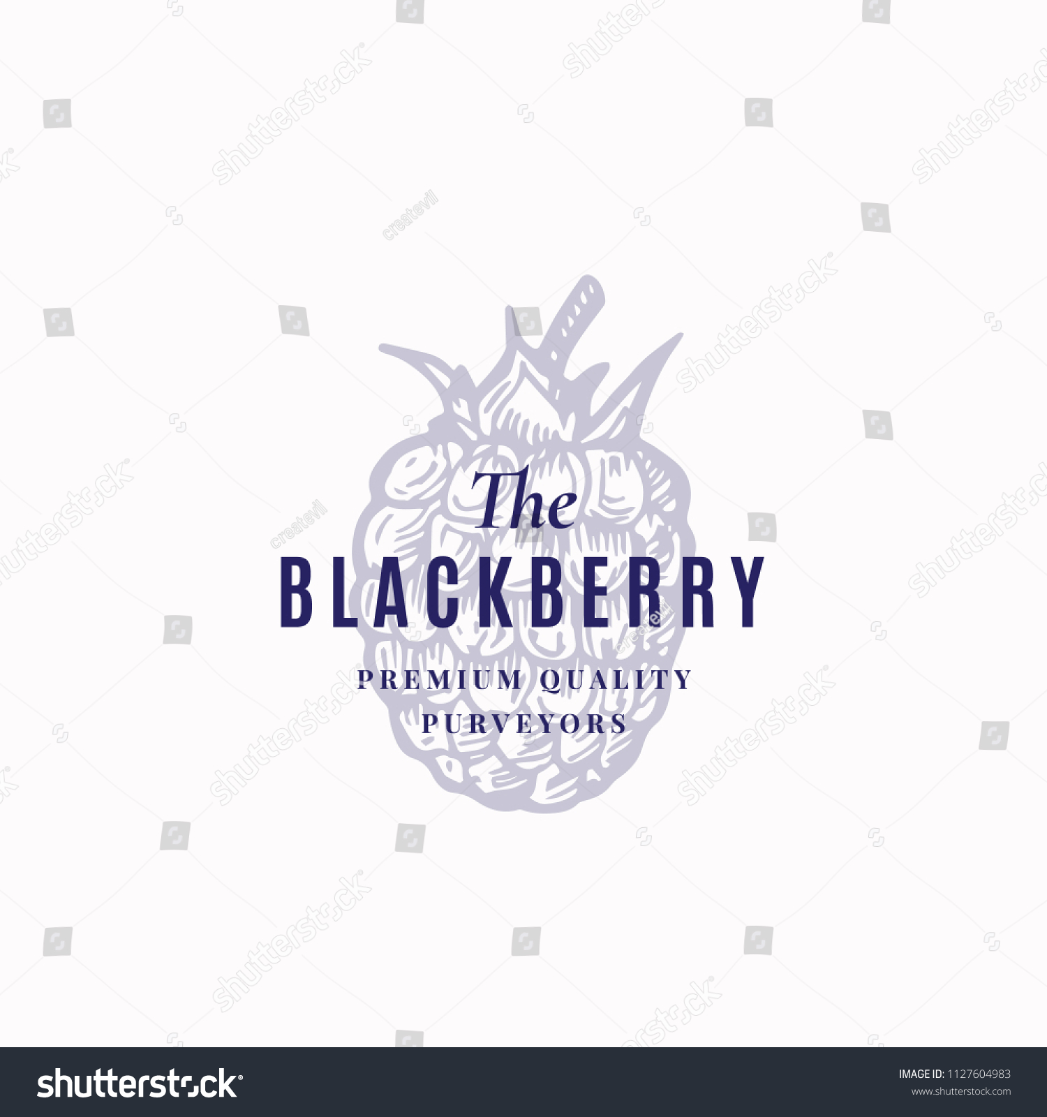 Blackberry Abstract Vector Sign Symbol Logo Stock Vector Royalty