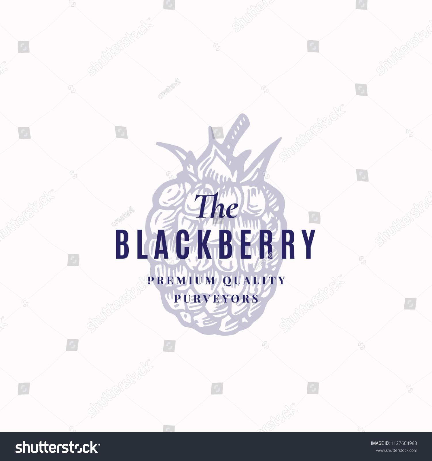 Blackberry Abstract Vector Sign Symbol Logo Stock Vector Royalty