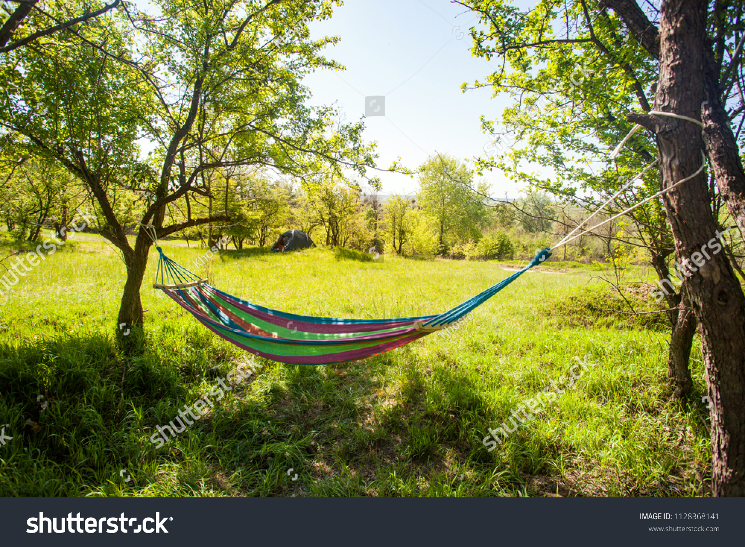 Hammock Hanging Between Trees On Green Stock Photo Edit Now