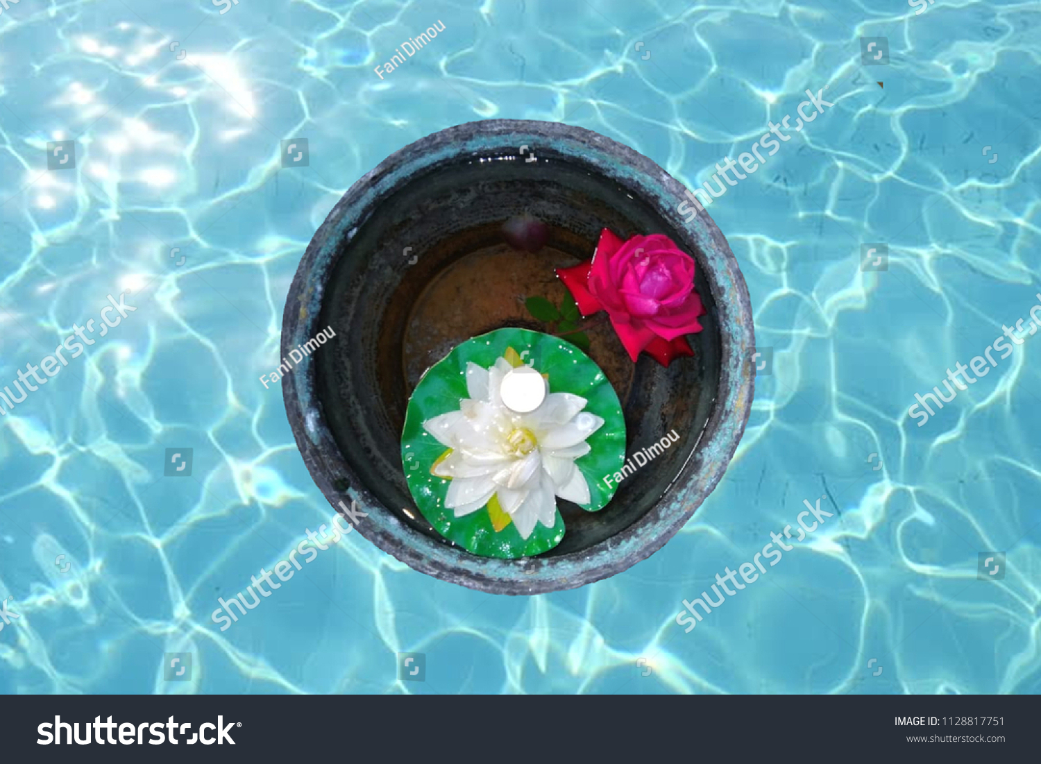 Flower Pot Pool Area Objects Stock Image 1128817751