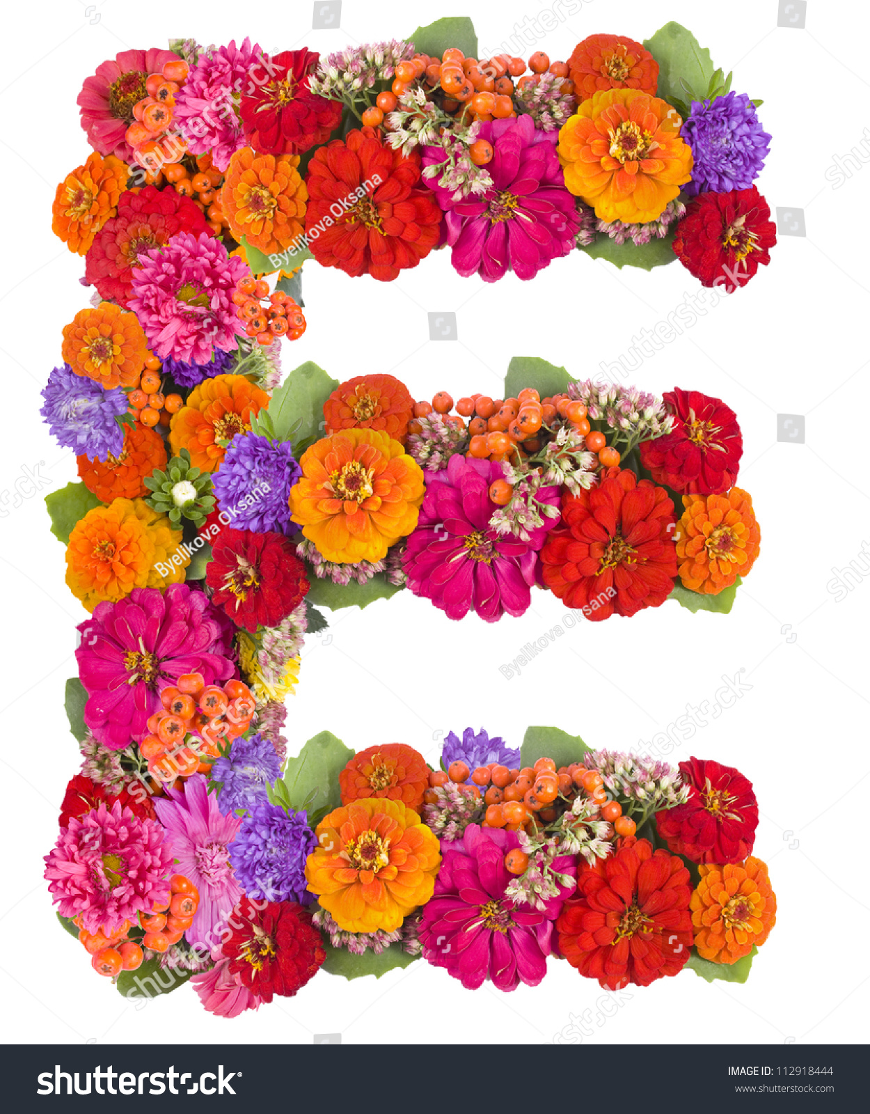 E flower alphabet isolated on white stock photo edit now 112918444 e flower alphabet isolated on white izmirmasajfo