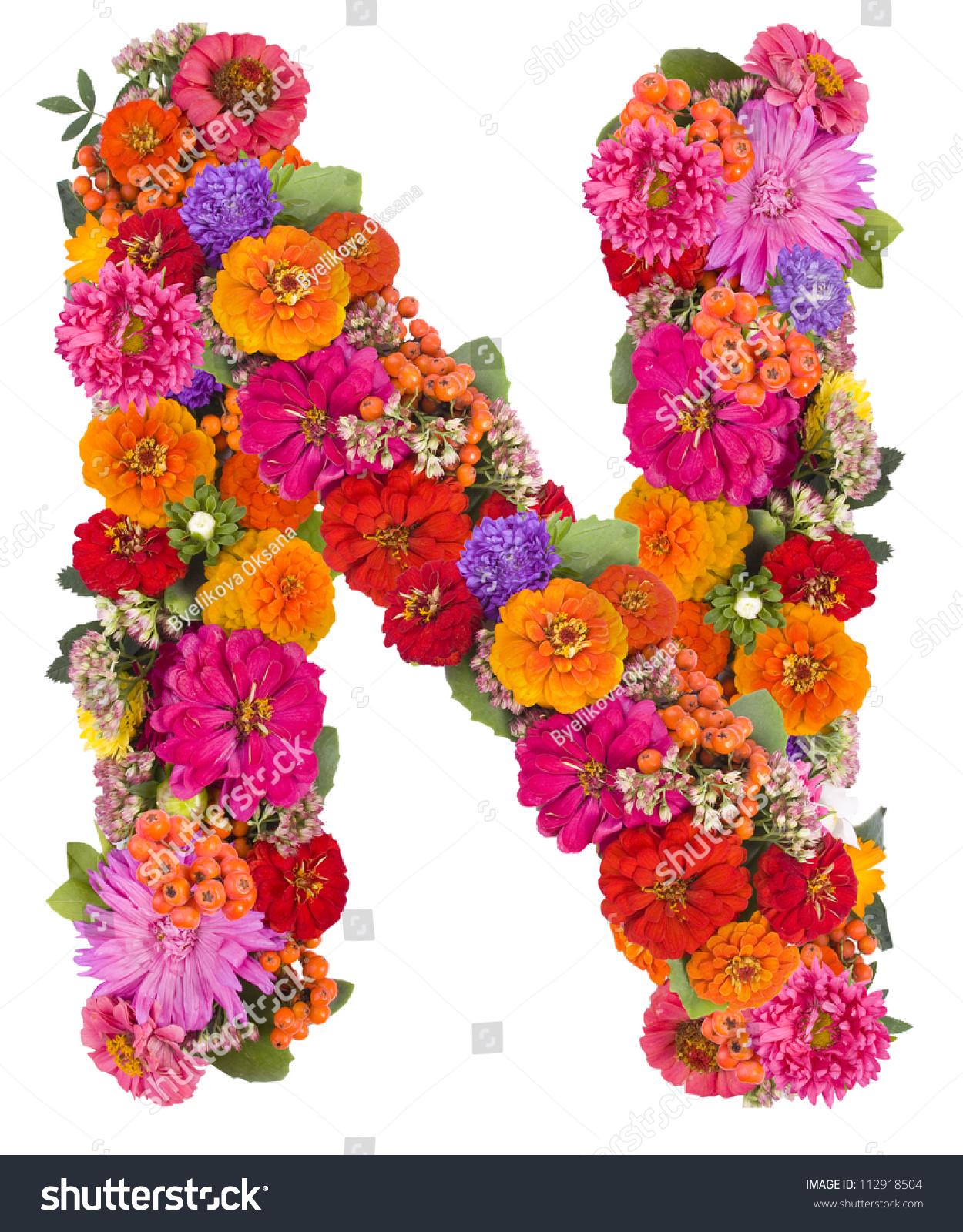 N, Flower Alphabet Isolated On White Stock Photo 112918504 : Shutterstock