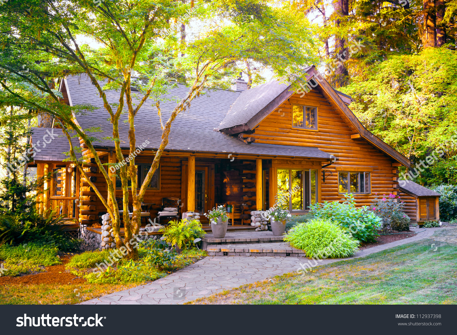 Modern log cabin home forest environment stock photo for Contemporary log cabins