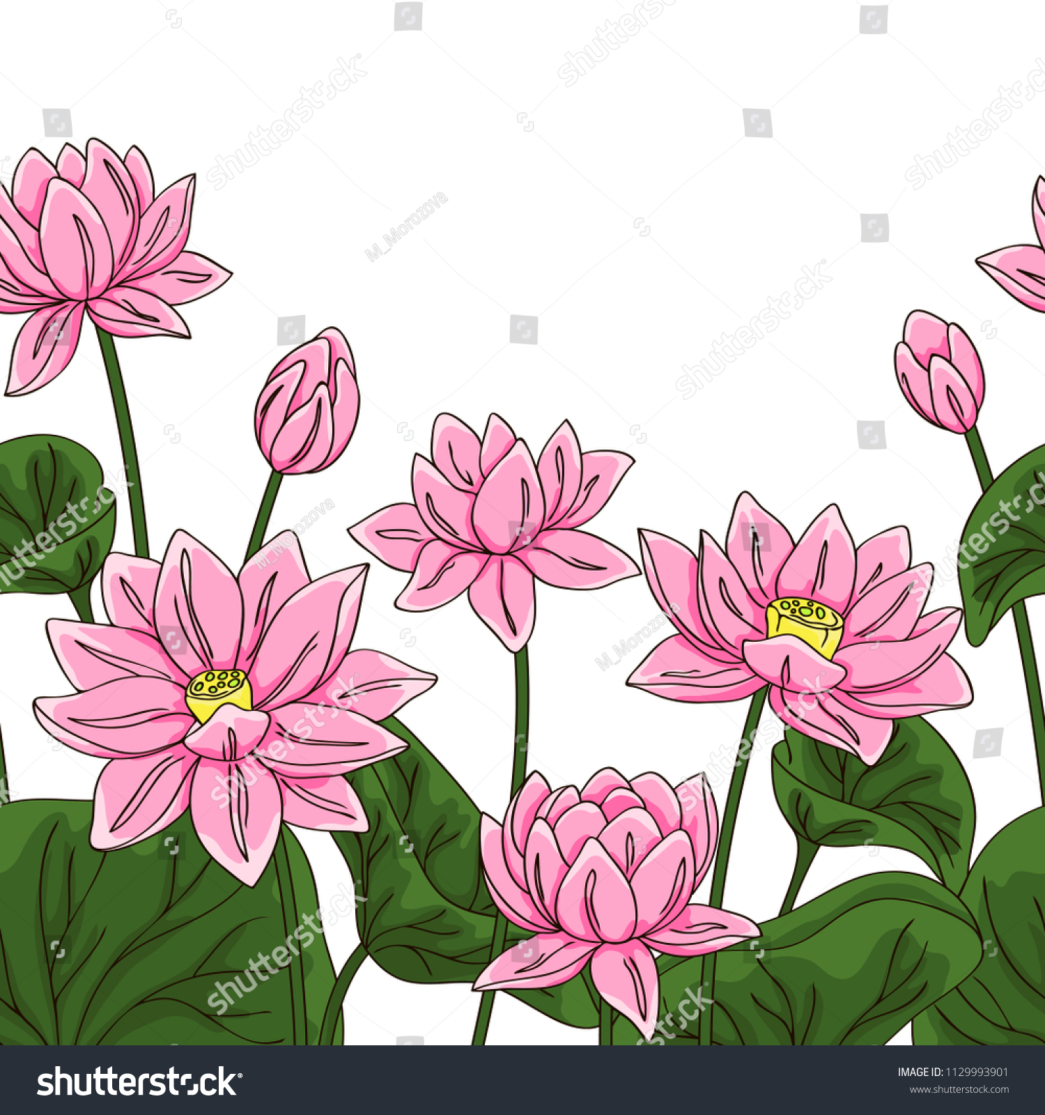 Vector contour color pink chinese lotus stock vector royalty free vector contour color pink chinese lotus flowers leaf asian symbol on white hand drawn seamless border izmirmasajfo